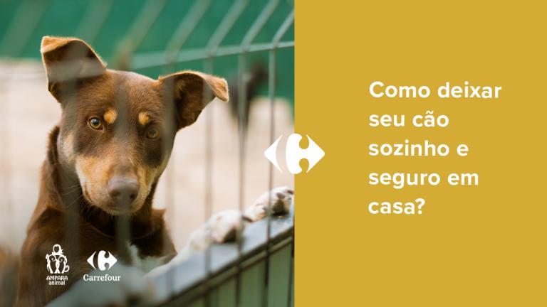 cachorro olhando atrás de uma grade de portão