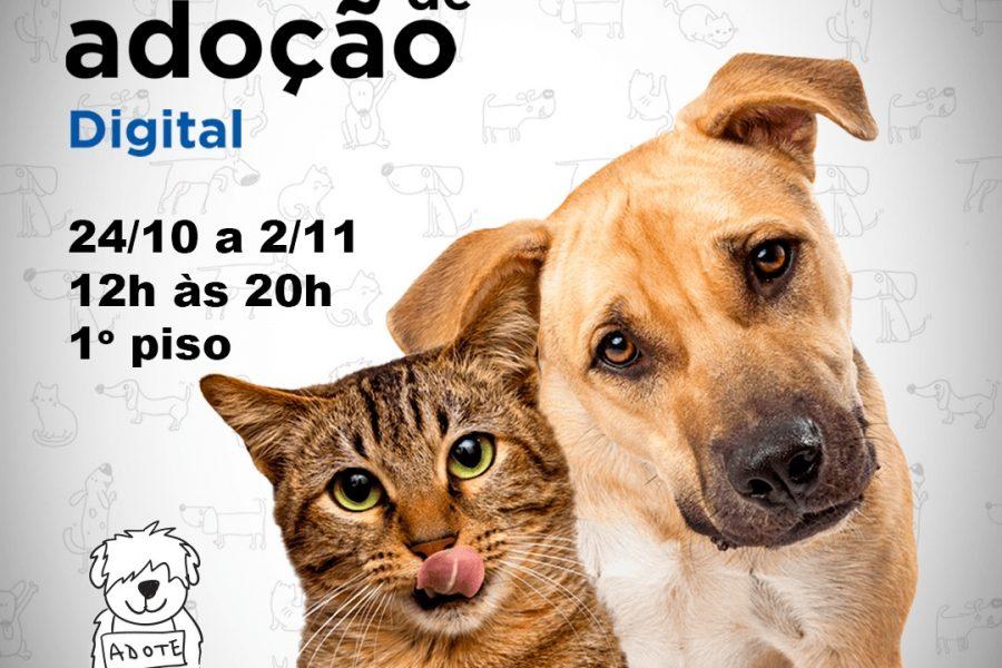 anúncio de evento de adoção digital com carrefour e ampara animal