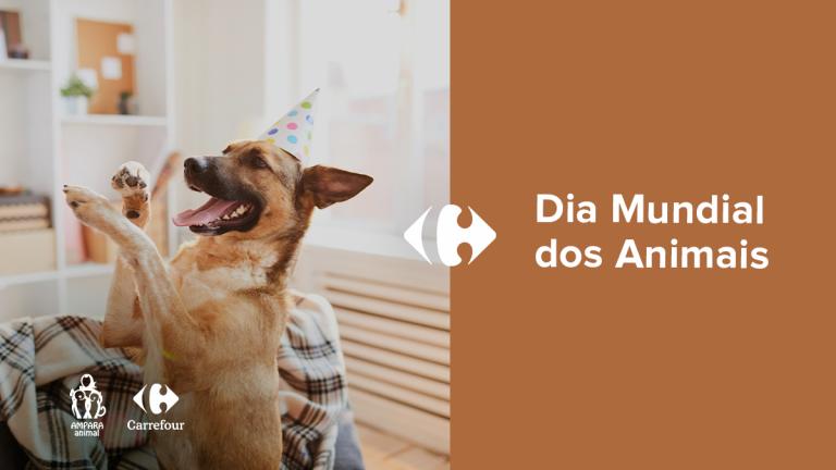 cachorro usando chapeu de festa dentro de casa